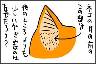 niseyaku_01